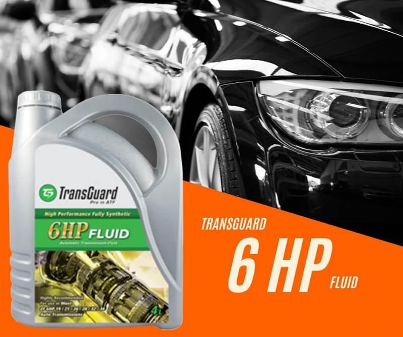 Transguard 6HP